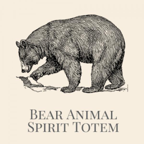 Bear Animal Spirit Medicine-2