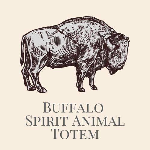 Buffalo Spirit Animal Medicine