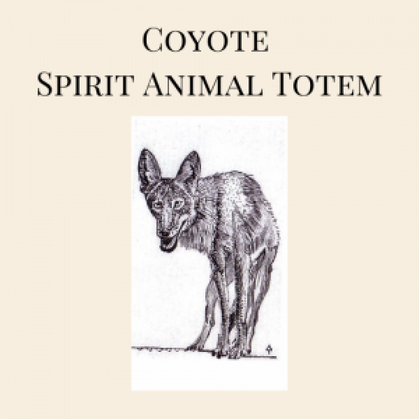 Coyote Spirit Animal Totem
