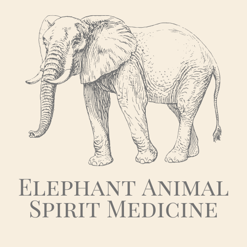 Elephant Animal Spirit Medicine
