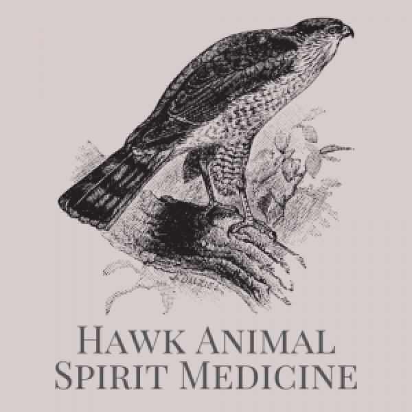 Hawk Animal Spirit Medicine Logo