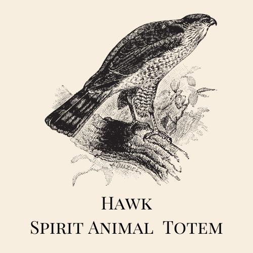 Hawk Spirit Animal Totem
