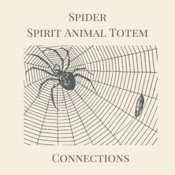Spider Spirit Animal Totem