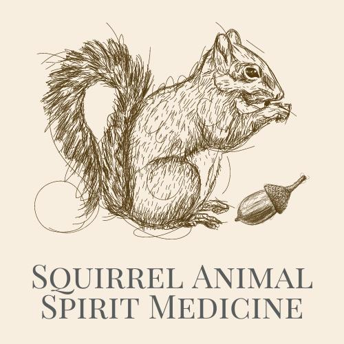 Squirrel Animal Spirit Medicine Logo