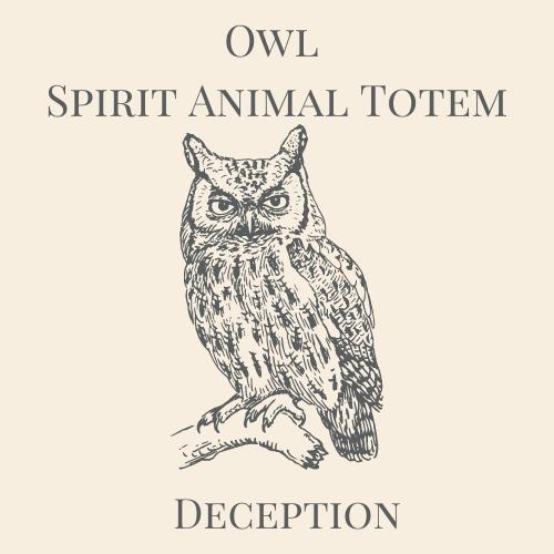 Owl Spirit Animal Totem-2