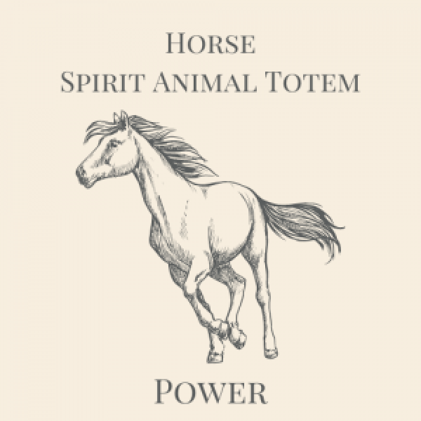 Horse Spirit Animal Medicine