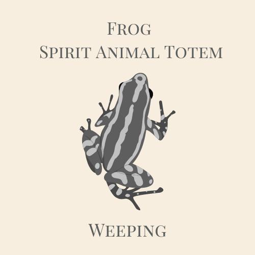 Frog Spirit Animal Totem