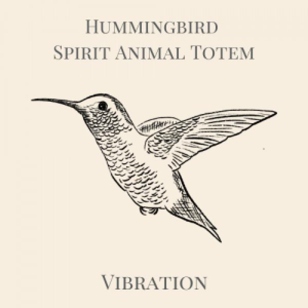 Hummingbird Animal Spirit Medicine Logo-3