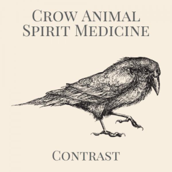 Crow Animal Spirit Totem Logo-2