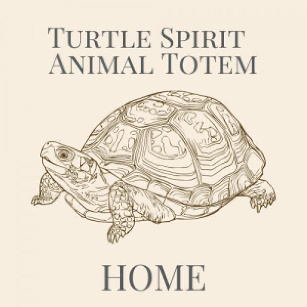 Turtle Animal Spirit Medicine Logo