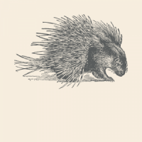 Porcupine Spirit Animal Totem
