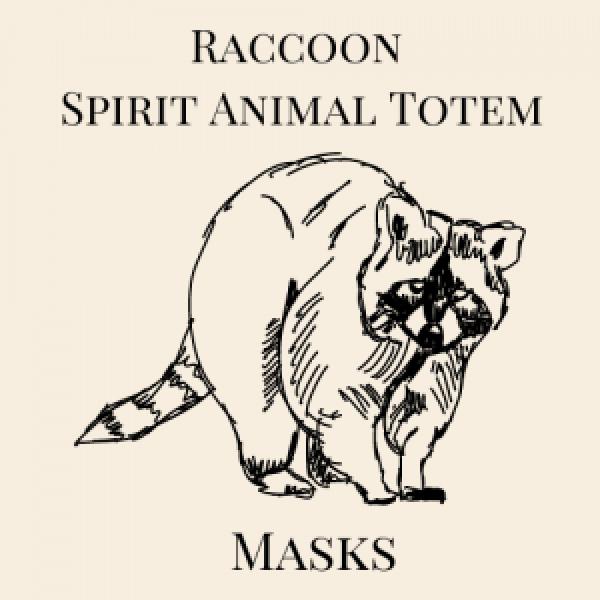 Raccoon Animal Spirit Medicine
