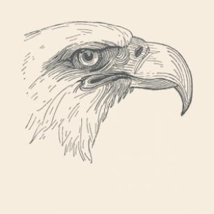Eagle Spirit Animal Totem