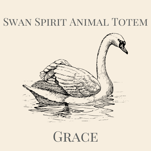 Swan Spirit Animal Totem