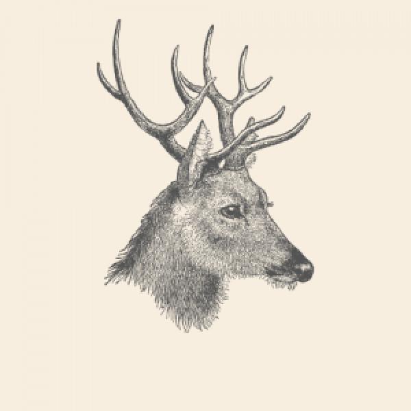 Deer Animal Spirit Medicine Logo No Lettering