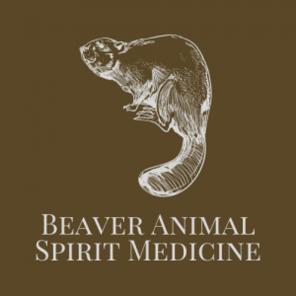 Beaver Animal Spirit Medicine