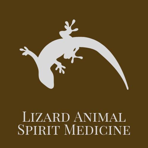 Lizard Animal Spirit Medicine
