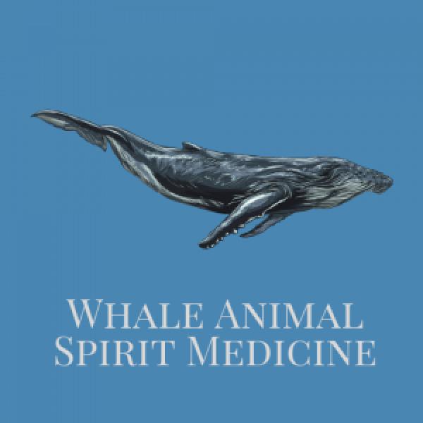 Whale Animal Spirit Medicine